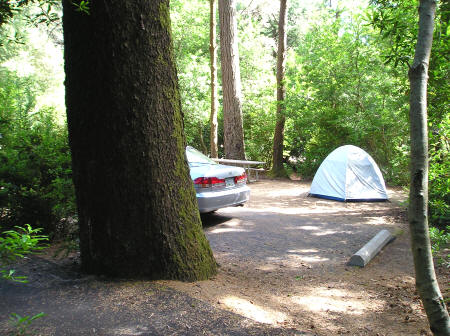 Honeyman State Park and Campground