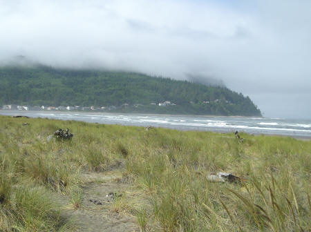 Cabins and Beach Houses in Seaside Oregon